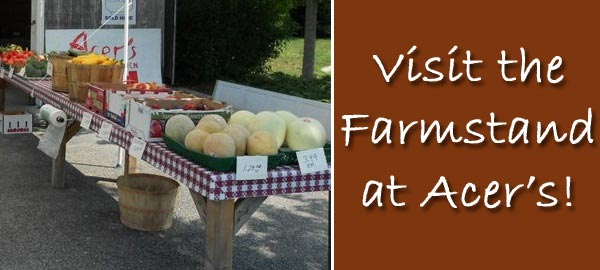 Acer's Farmstand