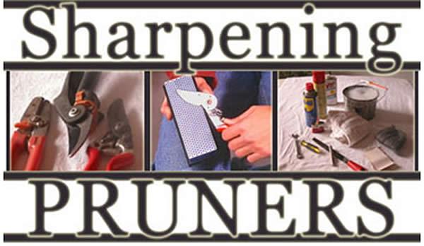 sharpening pruners