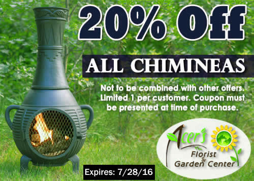 Chimineas Coupon
